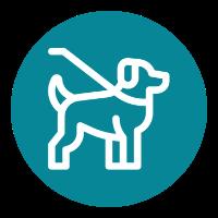 Dog walkers & pet carers
